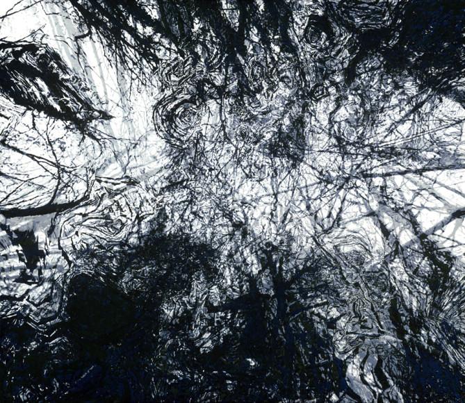 Novemberwald - 2012 - Acryl auf Leinwand - 130 cm x 150 cm